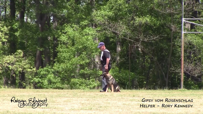 Rick Schair and Gipsy vom Rosenschlag - Protection 93 (2014 GSDCA-WDA National IPO & FH Championship)