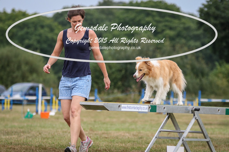 Bridgehouse Agility Club -2012