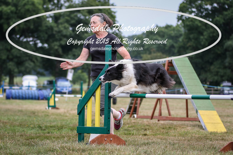 Bridgehouse Agility Club -2018