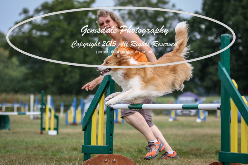 Bridgehouse Agility Club -2011