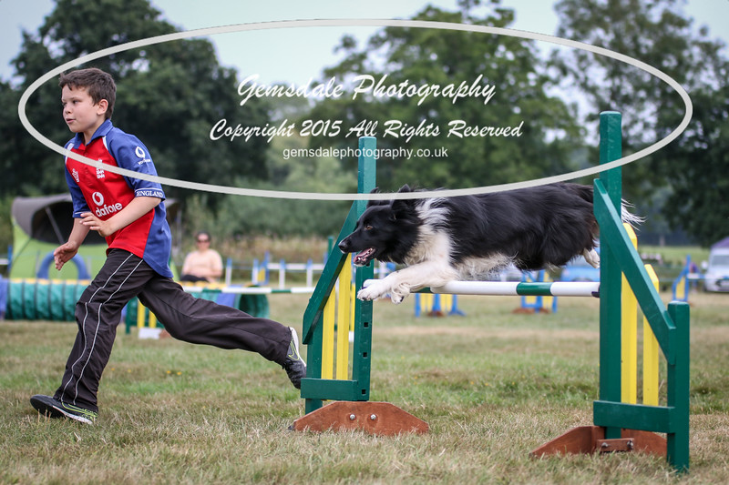 Bridgehouse Agility Club -2004