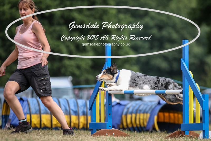 Bridgehouse Agility Club -3033