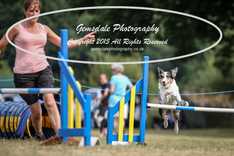 Bridgehouse Agility Club -3032