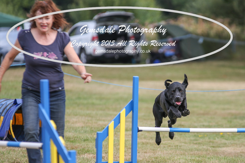 Bridgehouse Agility Club -3019
