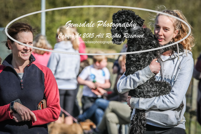 Paws at Play March 25th 2017-4028