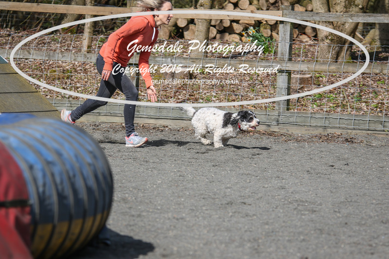 Paws at Play March 25th 2017-5022