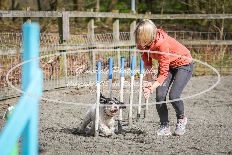 Paws at Play March 25th 2017-5072