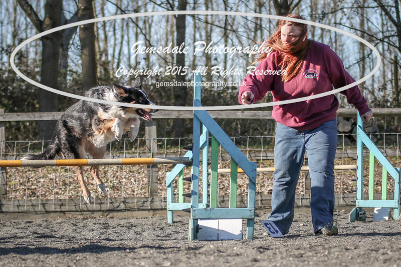 Paws at Play March 25th 2017-8007