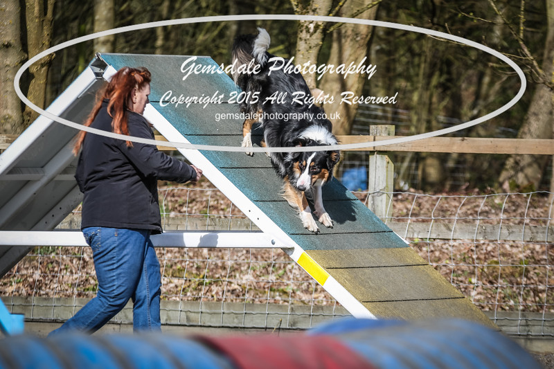 Paws at Play March 25th 2017-8006