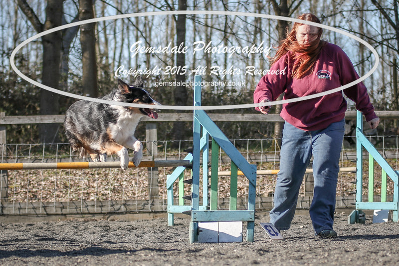 Paws at Play March 25th 2017-8008