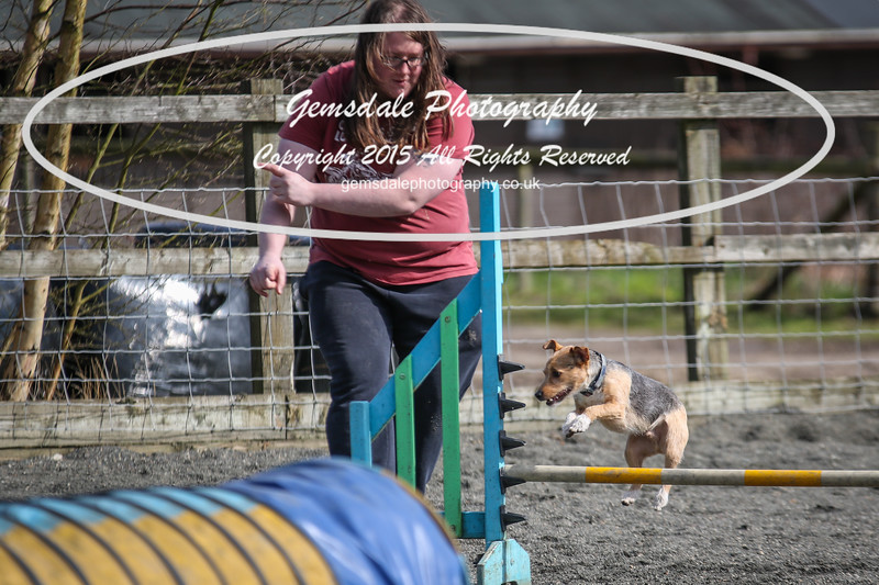 Paws at Play March 25th 2017-11007