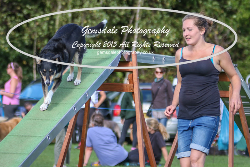 Southdowns Agility 25th September 2016-1033