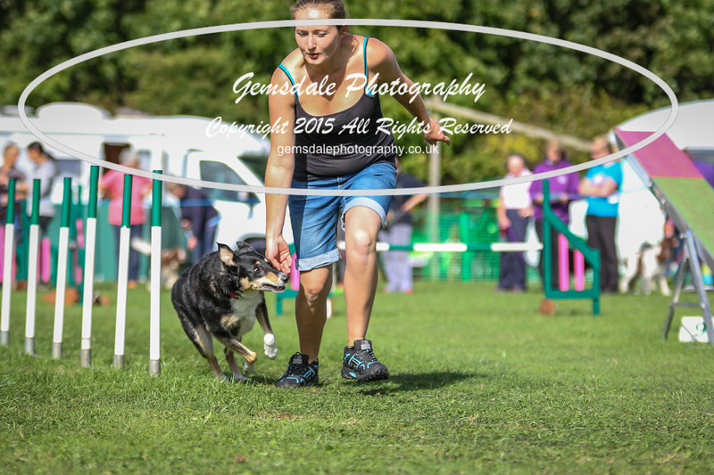 Southdowns Agility 25th September 2016-1031