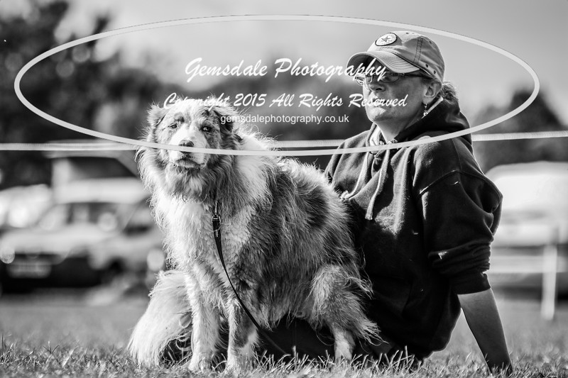 Southdowns Agility 25th September 2016-1042