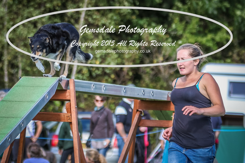 Southdowns Agility 25th September 2016-1027