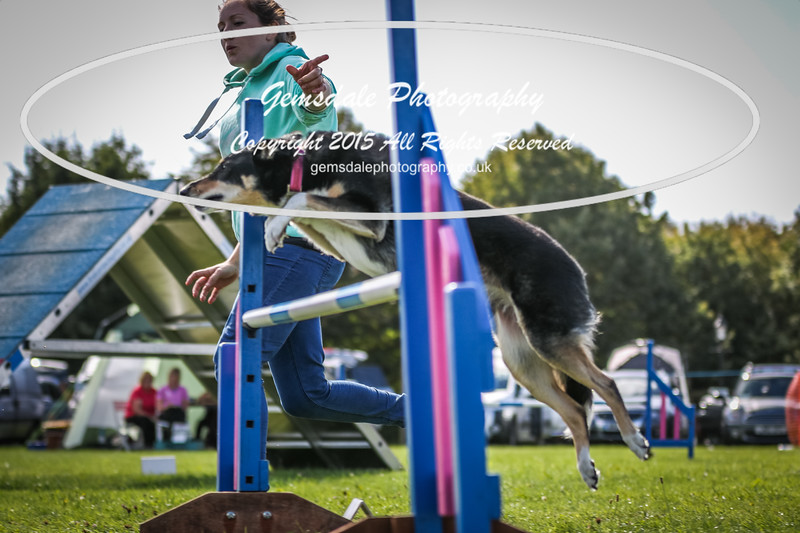 Southdowns Agility 25th September 2016-4009