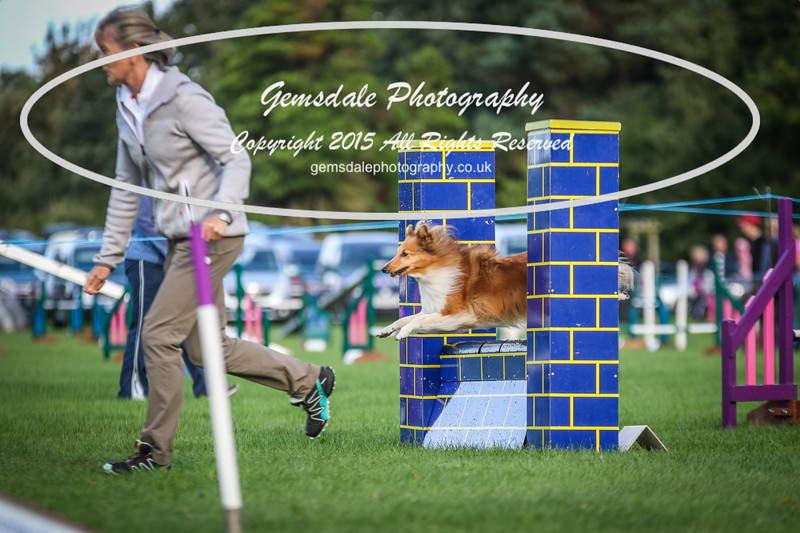 Southdowns Agility 25th September 2016-2023