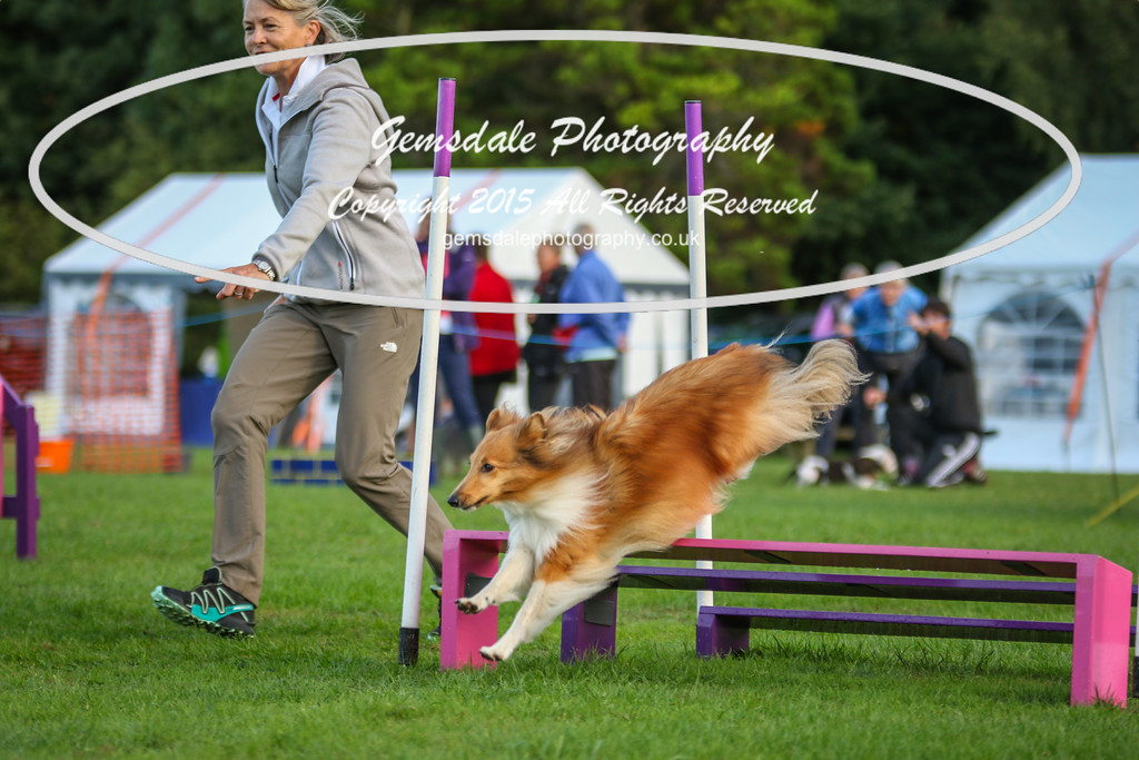 Southdowns Agility 25th September 2016-2022