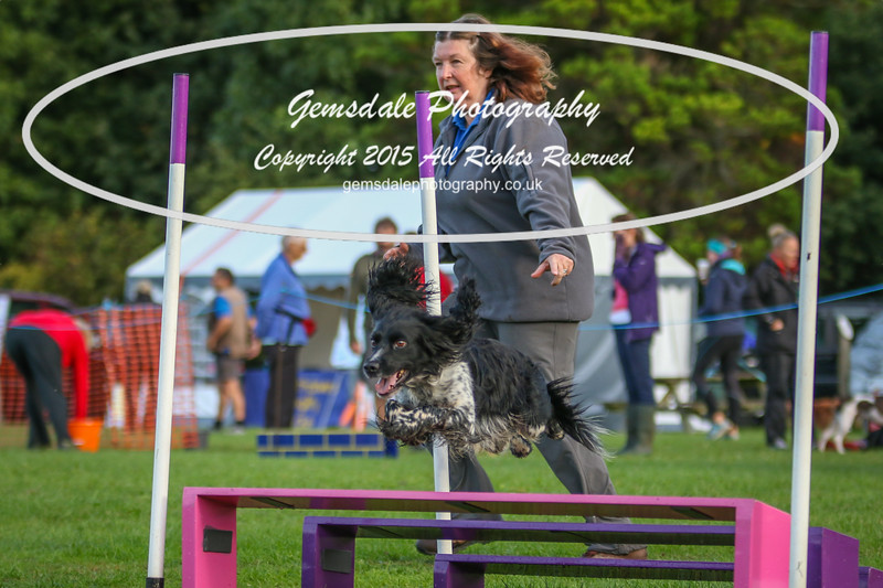Southdowns Agility 25th September 2016-2025