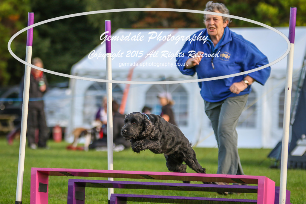 Southdowns Agility 25th September 2016-2029