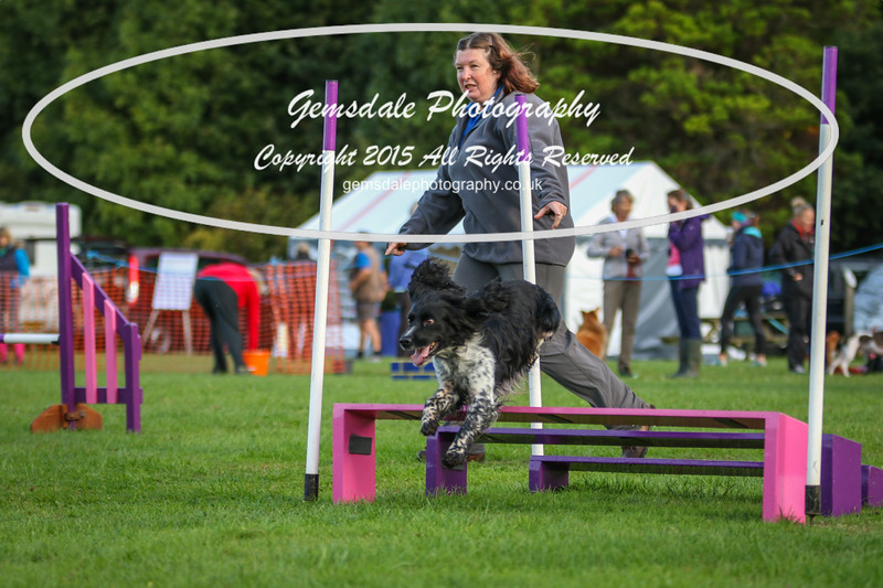 Southdowns Agility 25th September 2016-2026