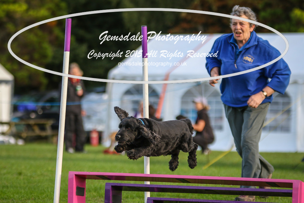 Southdowns Agility 25th September 2016-2030