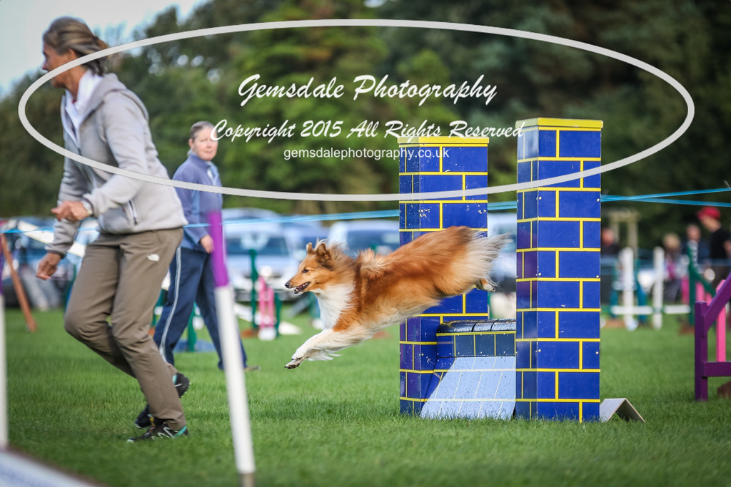Southdowns Agility 25th September 2016-2024