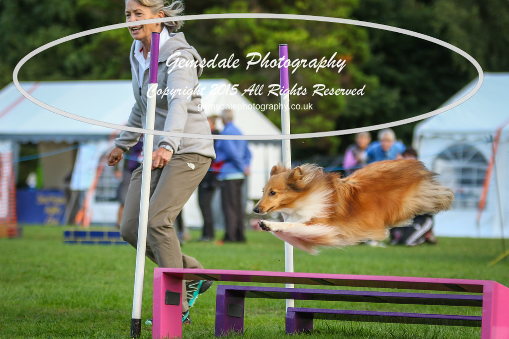 Southdowns Agility 25th September 2016-2021