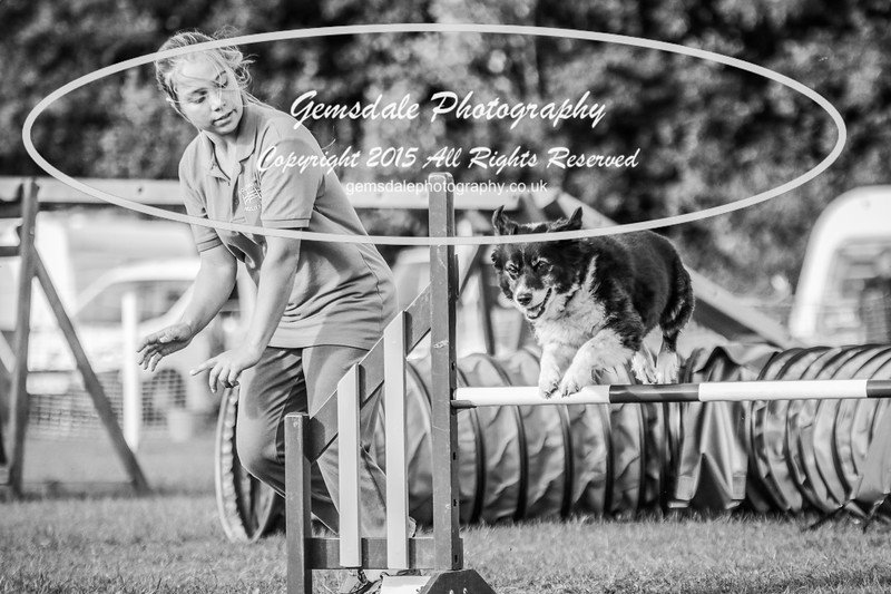 Southdowns Agility 25th September 2016-3073