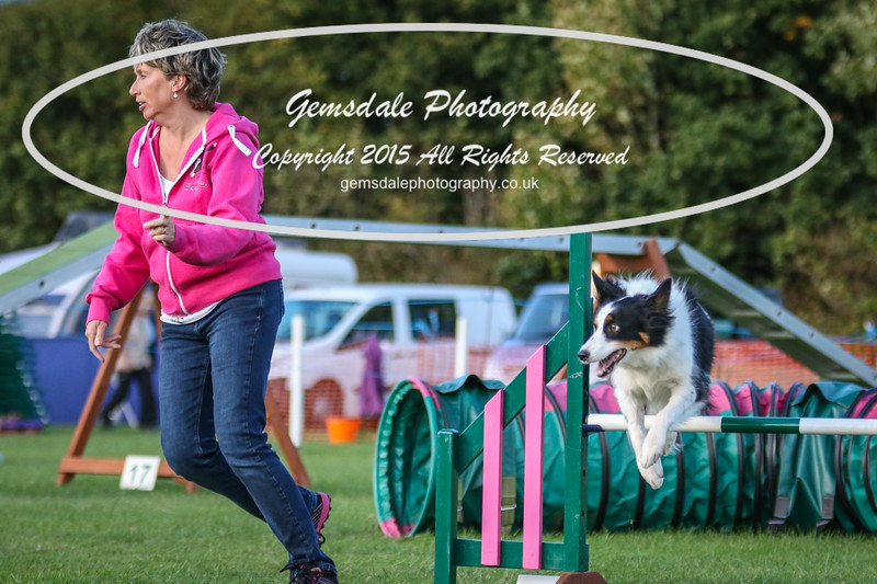 Southdowns Agility 25th September 2016-3076