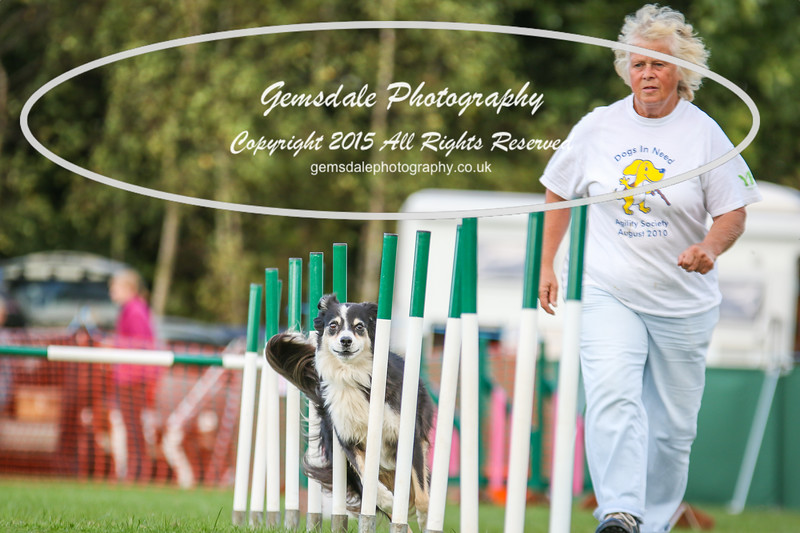 Southdowns Agility 25th September 2016-3006