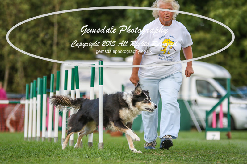 Southdowns Agility 25th September 2016-3008