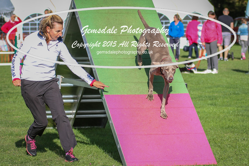 Southdowns Agility 25th September 2016-3023