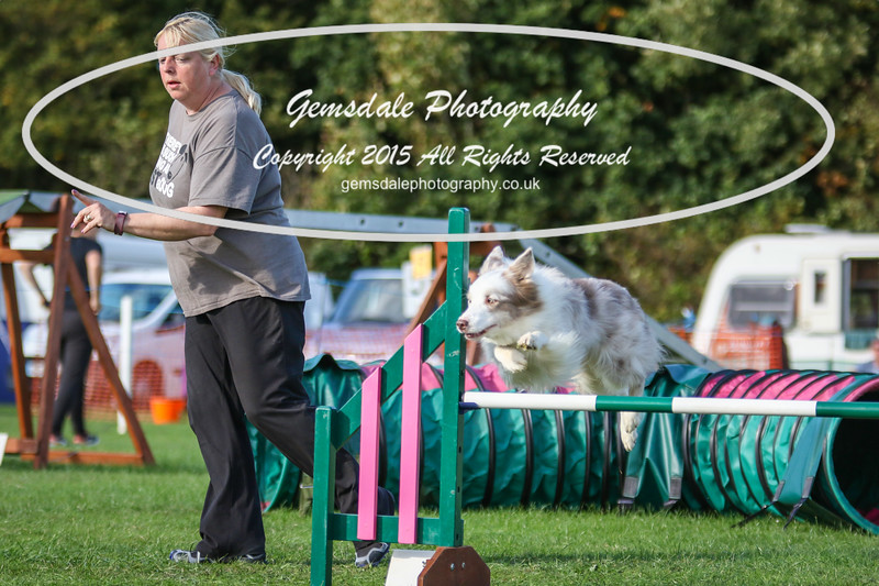 Southdowns Agility 25th September 2016-3088