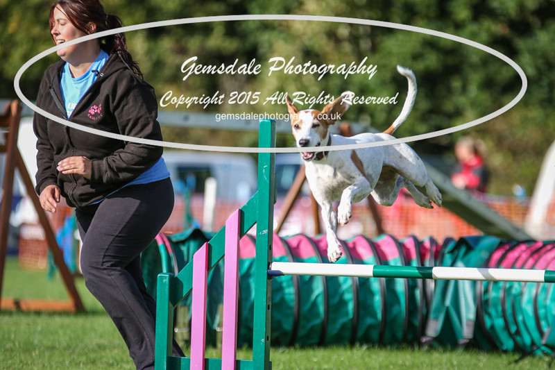Southdowns Agility 25th September 2016-3048