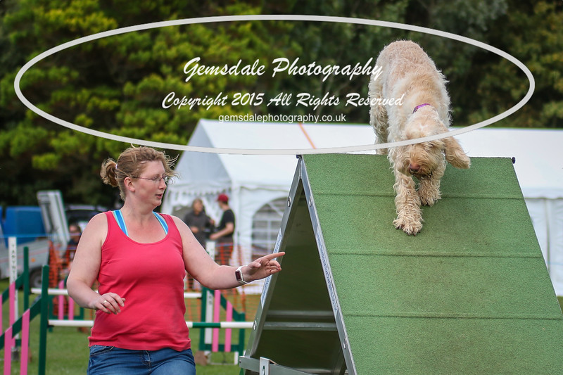 Southdowns Agility 25th September 2016-3000
