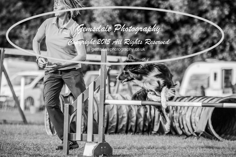 Southdowns Agility 25th September 2016-3083