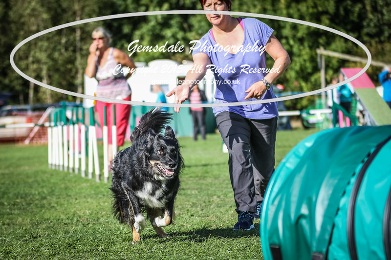 Southdowns Agility 25th September 2016-3028