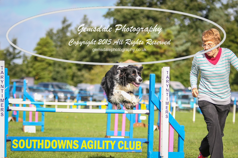 Southdowns Agility 25th September 2016-5000