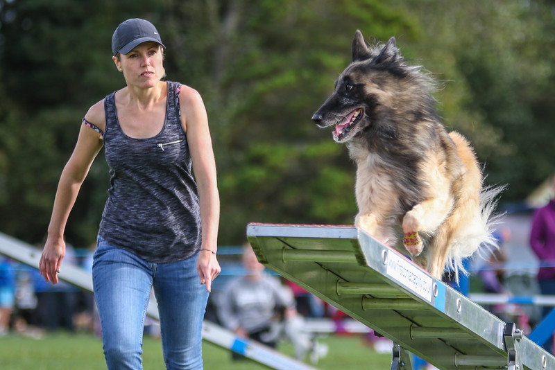 Southdowns Agility 25th September 2016-5037