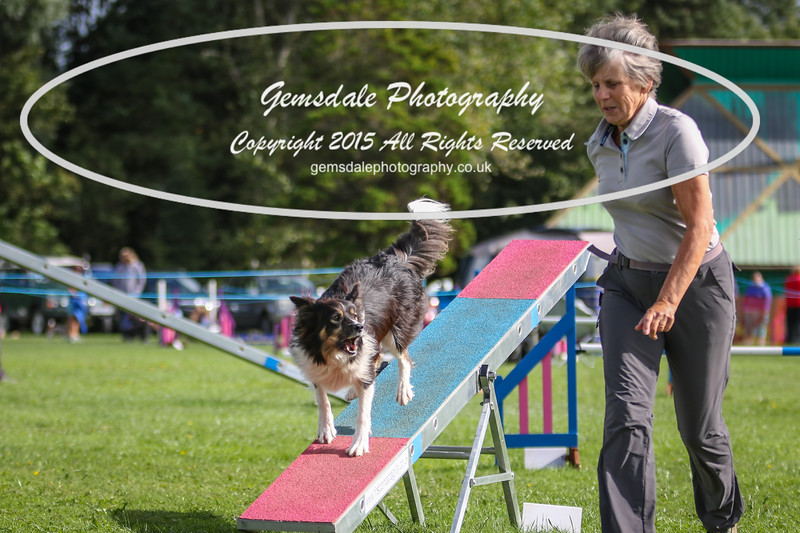 Southdowns Agility 25th September 2016-5026