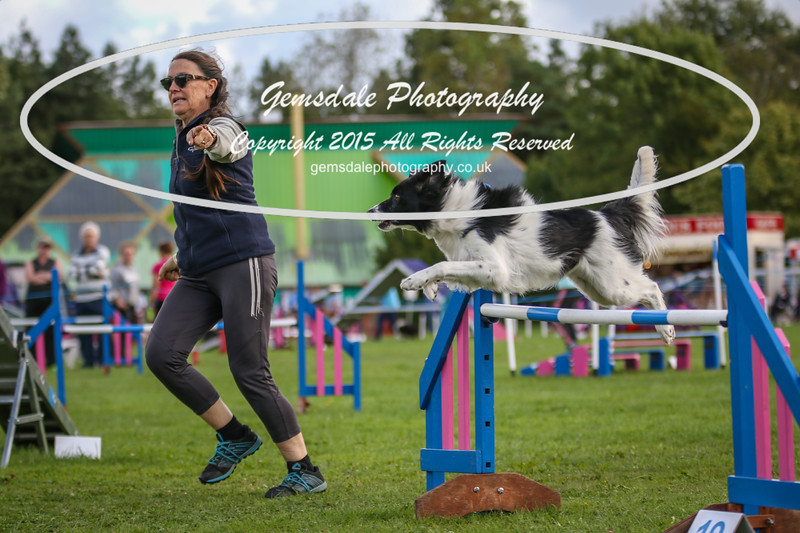 Southdowns Agility 25th September 2016-5045