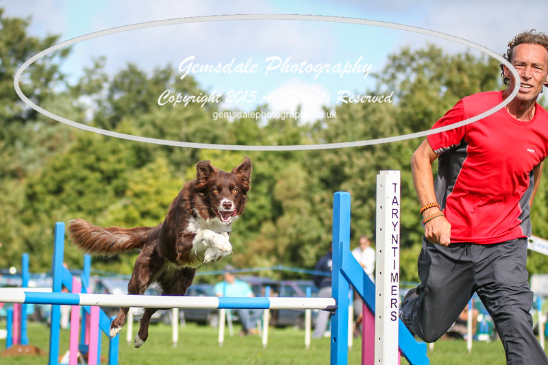Southdowns Agility 25th September 2016-5005