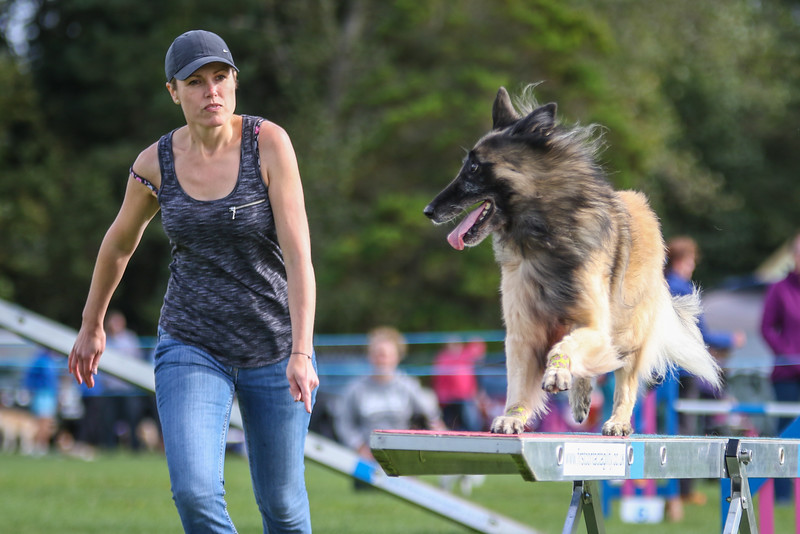 Southdowns Agility 25th September 2016-5038
