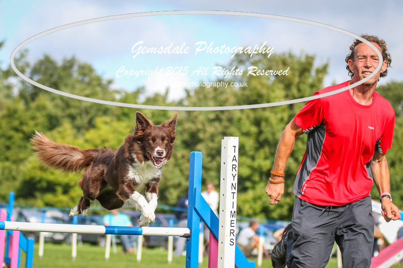 Southdowns Agility 25th September 2016-5006