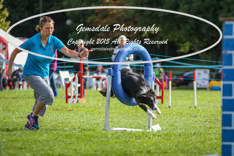 Southdowns Agility 25th September 2016-5028