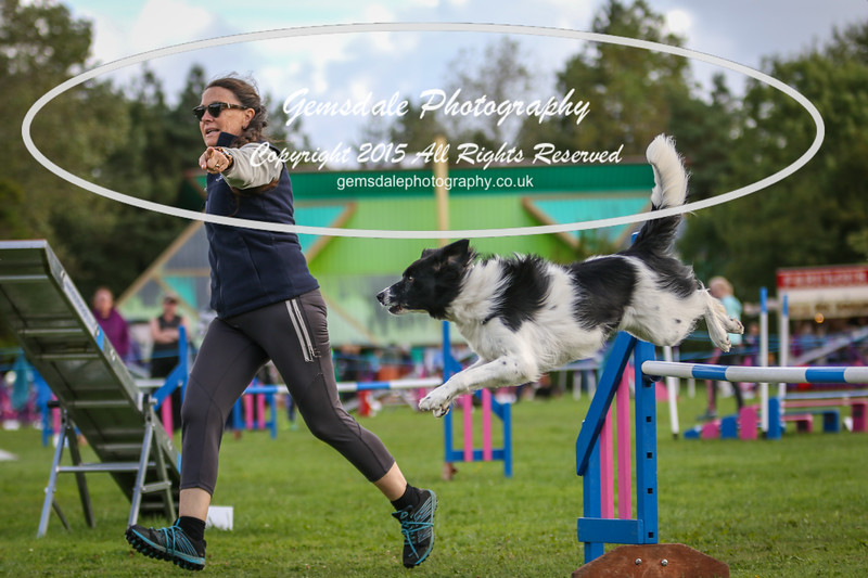 Southdowns Agility 25th September 2016-5046