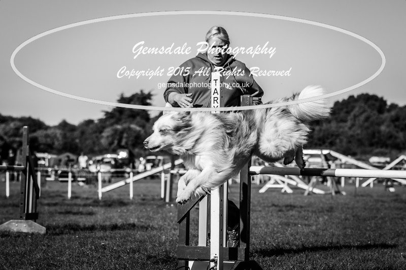 KC Southdowns Agility September 2015 -2026