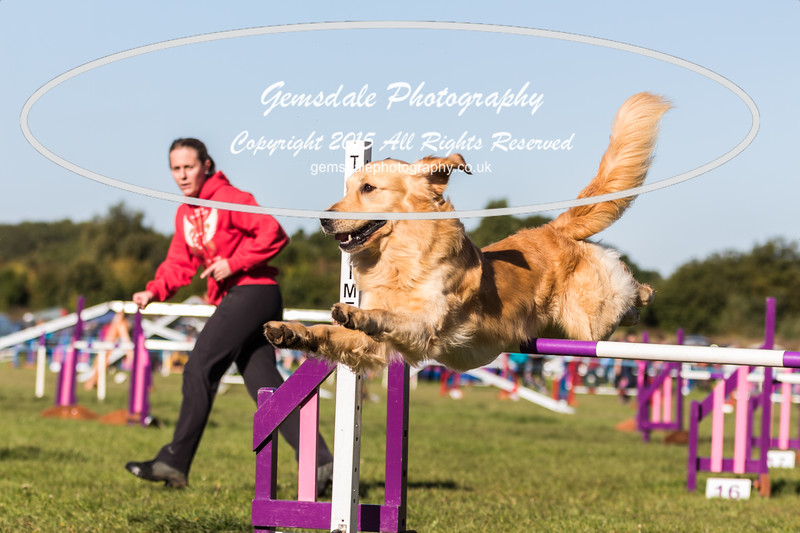 KC Southdowns Agility September 2015 -2020