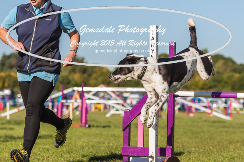 KC Southdowns Agility September 2015 -2023